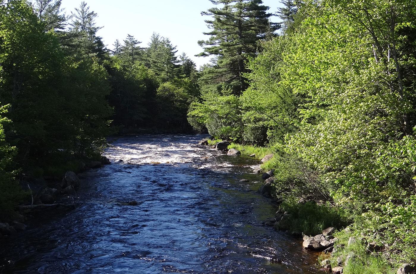 Machias River Preserve