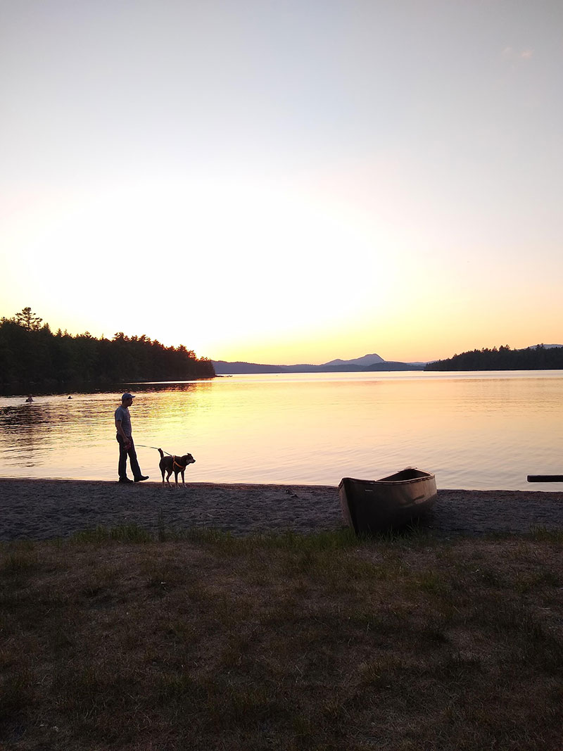 walking a dog at sunset
