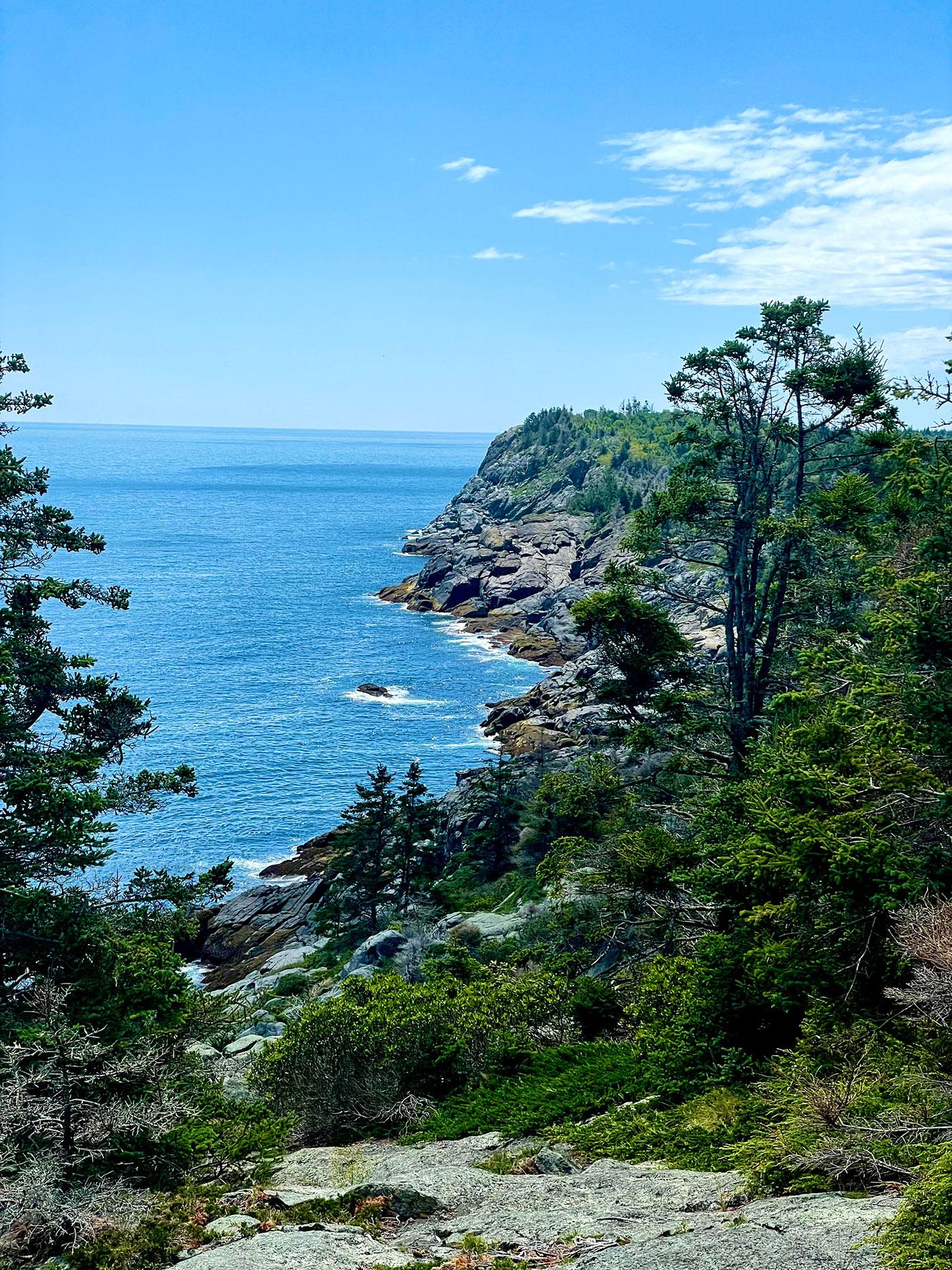 rocky Maine coast with trees