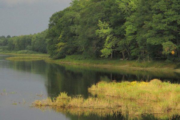 Penobscot River island
