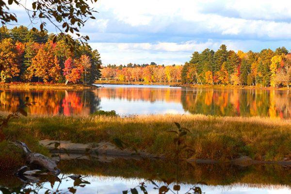 Fall foliage along Penobscot River