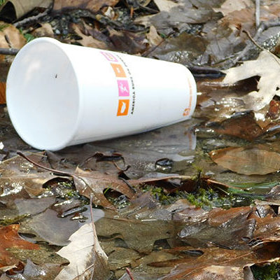 plastic cup litter in Maine